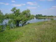 Продам дом в Черниговской области село Вересочь