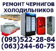 Срочный ремонт холодильников холодильника морозильной камеры Чернигов