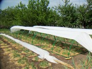 Агроволокно - спанбонд,  полипропиленовый укрывной материал