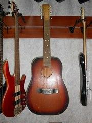 Черниговская 12 струнная Гитара Супер Экономный вариант