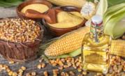 Масло подсолнечное,  кукурузное,  рапсовое,  пальмовое рафинированное и н