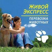 Перевезення тварин по Україні та за кордон